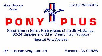 Pony Plus Business Card